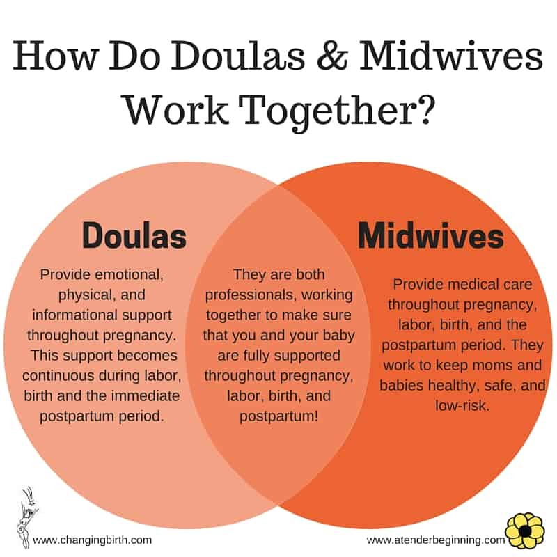 How do Doulas & Midwives work together?